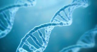 Saç dökülmesi üzerinde etki sahibi olan en önemli faktör; genlerdir.